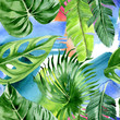 canvas print picture - Palm beach tree leaves jungle botanical. Watercolor background illustration set. Seamless background pattern.
