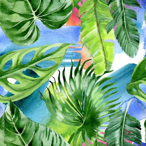 palmowe-drzewo-opuszcza-dzungle-botaniczna