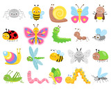 Fototapeta Fototapety na ścianę do pokoju dziecięcego - Cute insects. Big set of cartoon insects for kids and children. Butterflies, snail, spider, moth and many other