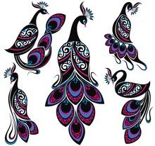 Peacock Drawing Fantasy Birds.Collection Of Peacocks