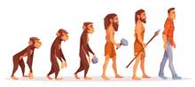 Human Evolution Cartoon Vector...