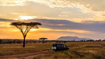 Zalazak sunca u savani Afrike s bagremima, Safari u Serengetiju iz Tanzanije