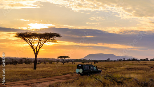 Cadres-photo bureau Beige Sunset in savannah of Africa with acacia trees, Safari in Serengeti of Tanzania