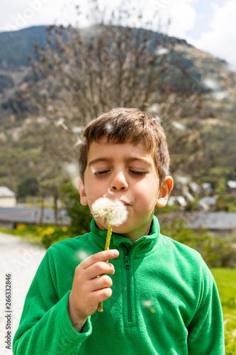 Fotografie, Obraz Little boy blowing a dantelion in a green field