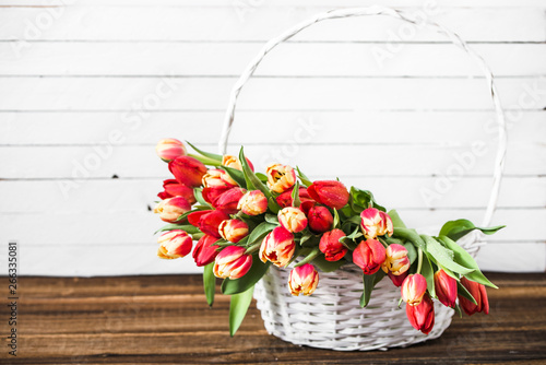 Fototapety, obrazy: Spring tulip bouquet, basket with flowers. Background for women's day or mother's day card concept.