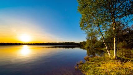 Fototapeta Wschód / zachód słońca Lake with trees at sunset on a beautiful summer evening