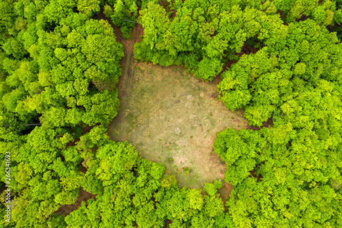 Stickers pour portes Pistache Aerial view of a glade meadow in a green forest
