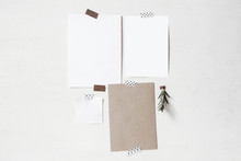 Set Of Blank Greeting Cards, Note Paper Mockups. Empty Sheets Of White And Kraft Paper And Rosemary Herb Branch Taped On The Old White Wall. Design Mood Board. Memory Concept.