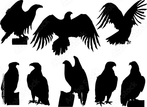 Canvas Prints Owls cartoon eight eagle silhouettes on white