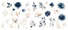 Set Watercolor Design Elements...