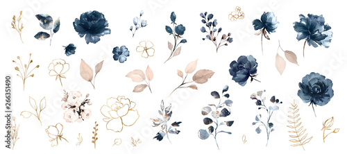 Set watercolor design elements of roses collection garden navy blue flowers, leaves, gold branches, Botanic  illustration isolated on white background. - 266351490