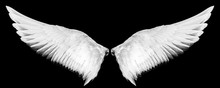 White Wings Isolated On A Blac...