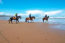 Horse Riding At Carapateira Be...