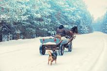 A Man Rides A Horse-drawn Carr...