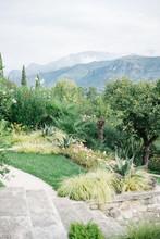 Beautiful View Of Green Terrac...