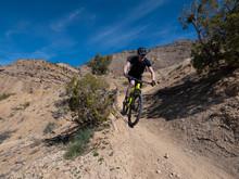 Active Senior Riding A Mountain Bike On Singletrack In Colorado