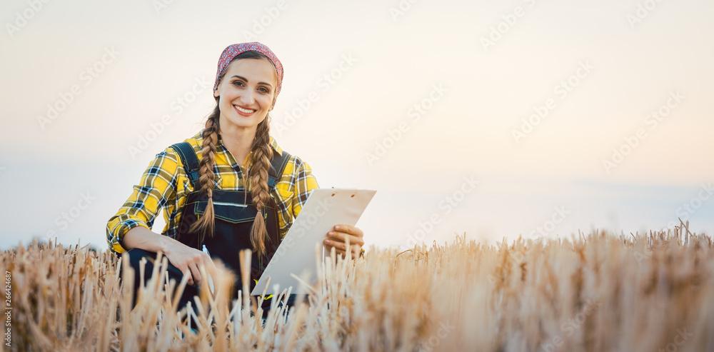 Fototapeta Bäuerin sitzt auf abgeerntetem Feld und macht plant Fruchtfolge für kommende Jahr