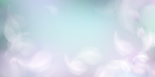 Soft Spring Background With Pu...