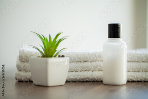 Poster Spa Spa Relax And Healthy Care. Healthy Concept. Natural domestic products for skincare