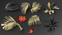Tropical Black And Gold Leaves On Dark Background Vector Set. Beautiful Botanical Isolated Design Element, Golden Tropic Jungle Palm Leaves, Exotic Red Flower And Rain Forest Plants.