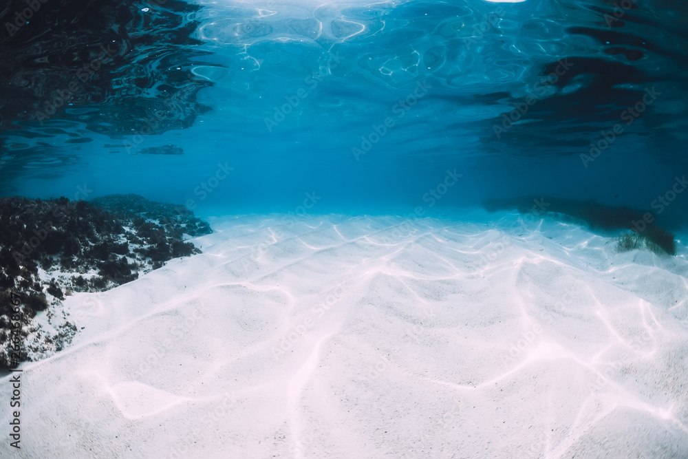 Fototapety, obrazy: Tropical blue ocean with white sand underwater in Hawaii