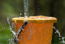 Pouring Water And Plastic Bucket.