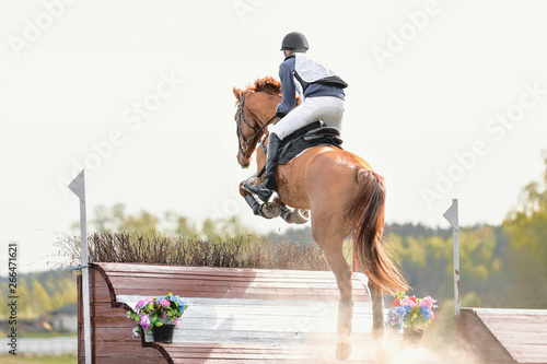 Fotomural  portrait of horse jumping (eventing competition)