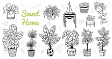 Cute Indoor And Outdoor Plants In Pots. Doodle Black And White Flowers, Cactus, And Succulents. Vector Illustration. Natural Design Elements Can Be Used For Postcards, Banners, Websites Or Ads.