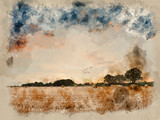 Watercolor painting of Summer sunset landscape over field of hay bales. - 266481455