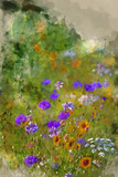 Watercolor painting of Beautiful Summer meadow of wild flowers - 266481481