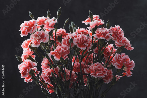 Foto auf Gartenposter Blumen Carnation flowers bouquet vintage color toned over dark moody art background