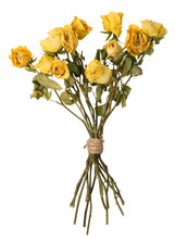 Dried Yellow Rosed Bouquet Iso...