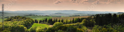 Foto  Tuscan landscape at sunset with cypress trees and vineyards near Siena