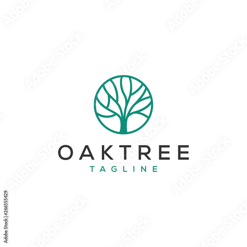 Photo simple oak tree vector logo design