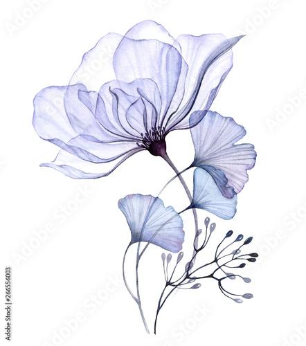 Fotografia Watercolor transparent floral arrangement of roses bellflower buds leaves branch