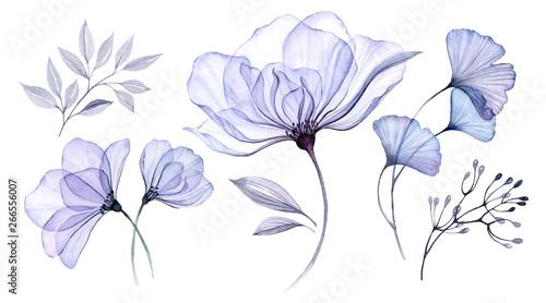 Photo  Transparent watercolor floral set bundle of roses, bellflower, buds, leaves, bra