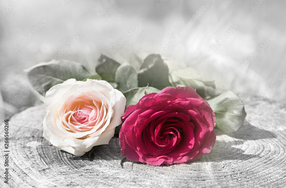 Fototapeta zwei Rosenblüten auf Holzstamm, Design für Trauer Karte