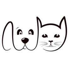 Cat And Dog Grooming And Care