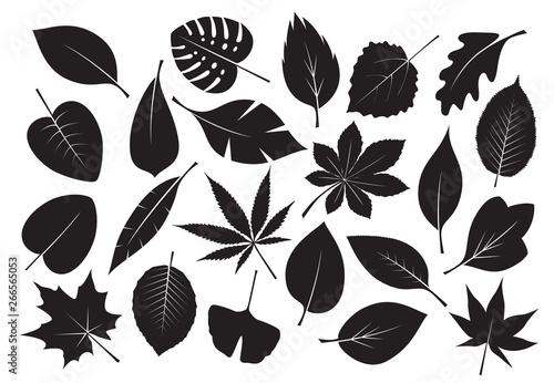 Fotografía Collection of black Leaves. Vector Illustration.