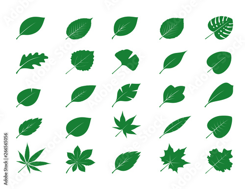 Fotomural Collection of Green Leaves. Vector Illustration.