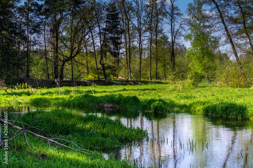 Poster Nature Mysterious River Grabia in spring day, Poland