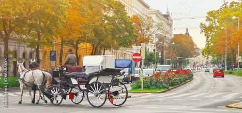 Valokuva  Famous traditional horse drawn fiaker carrige in the old historic center street of Vienna, Austria