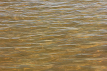 Muddy Water Surface On Sandy River Bottom