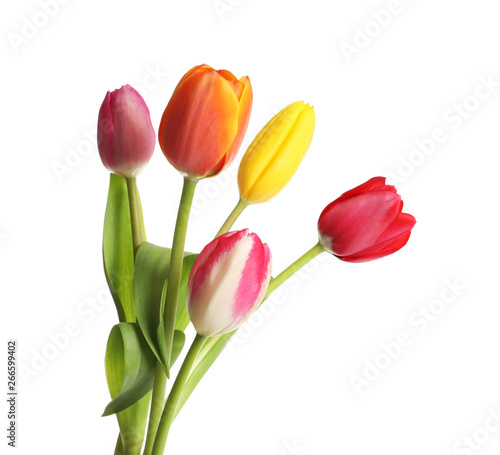 Beautiful bright tulips on white background. Spring flowers