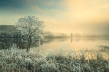 Hoar Frost And Snowy Landscape