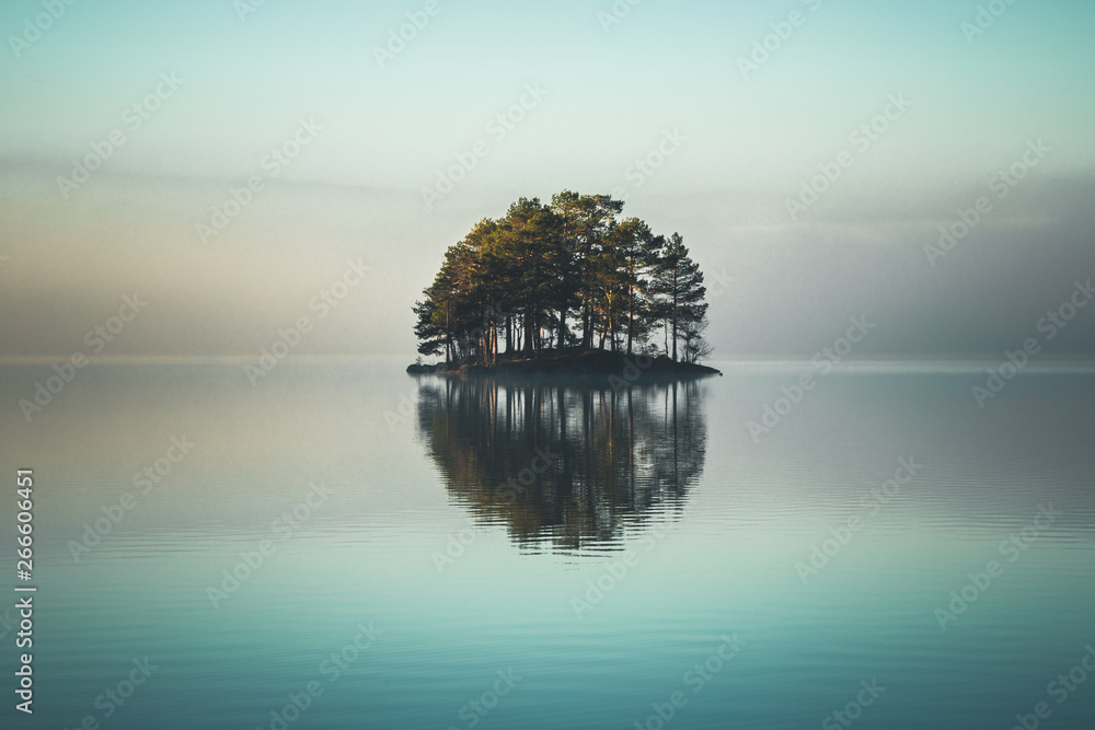 Fototapeta Tiny island covered by forest on the lake.