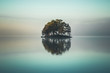 canvas print picture - Tiny island covered by forest on the lake.