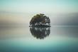 Leinwandbild Motiv Tiny island covered by forest on the lake.