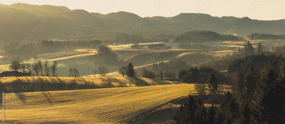 Fototapety, obrazy: Rural landscape with fog and sunrise light
