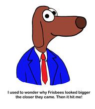 Dog Teacher Talks About The Ph...